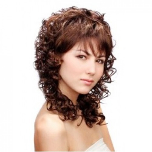 Synthetic Hair Wig Curly Medium Brown